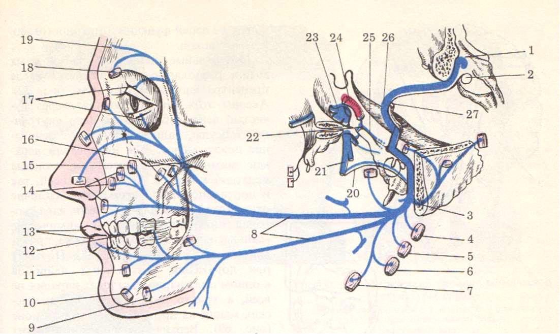 восстановите левую часть схемы реакции